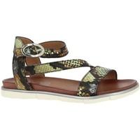 Chaussures Femme Sandales et Nu-pieds Mjus 740019 vert