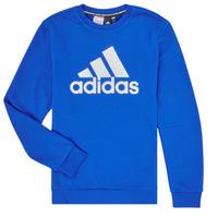 Kleidung Jungen Sweatshirts adidas Performance JB MH CREW