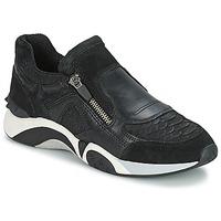 Chaussures Femme Baskets basses Ash HOP Noir