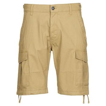 Vêtements Homme Shorts / Bermudas Jack & Jones JJIALFA