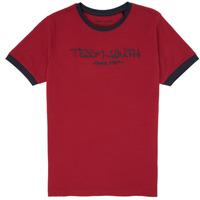 Vêtements Garçon T-shirts manches courtes Teddy Smith TICLASS 3