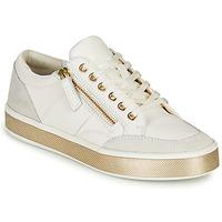 Scarpe Donna Sneakers basse Geox LEELU
