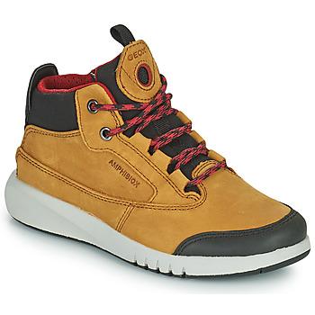 Schuhe Jungen Boots Geox AERANTER ABX Braun,