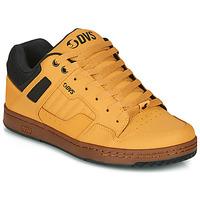 Chaussures Baskets basses DVS ENDURO 125