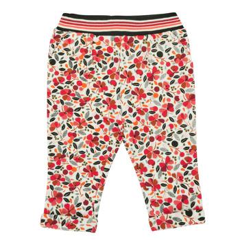 Kleidung Mädchen Leggings Catimini CR23003-19 Bunt