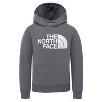 Vêtements Enfant Sweats The North Face DREW PEAK HOODIE