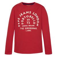 Vêtements Garçon T-shirts manches longues Pepe jeans ANTONI