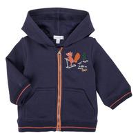 Vêtements Garçon Sweats Absorba 9R17092-04-B
