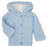 Vêtements Garçon Manteaux Carrément Beau Y96053