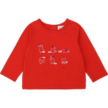 Vêtements Fille T-shirts manches longues Carrément Beau Y95252
