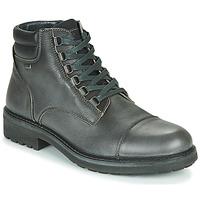 Schuhe Herren Boots IgI&CO UOMO FREDDY GTX Grau