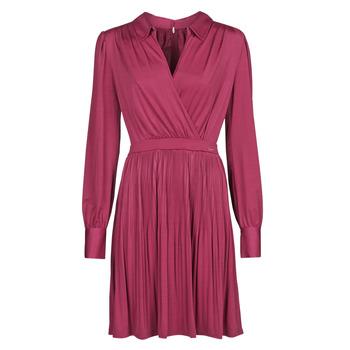 Kleidung Damen Kurze Kleider Marciano PLAYA DRESS Bordeaux