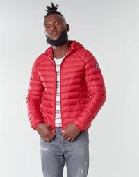 Abbigliamento Uomo Piumini JOTT NICO