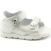 Chaussures Fille Sandales et Nu-pieds Balocchi BAL-E20-103113-ARG-a Argento