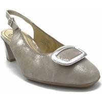 Chaussures Femme Escarpins Ara 18010 TAUPE