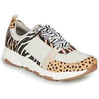 Schuhe Damen Sneaker Low Gioseppo CREAZZO Beige