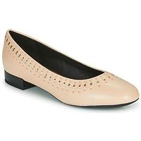 Chaussures Femme Ballerines / babies Geox D WISTREY