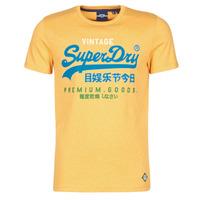 Vêtements Homme T-shirts manches courtes Superdry VL TRI TEE 220