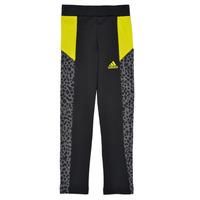 Kleidung Mädchen Leggings adidas Performance G LEO TIG Bunt