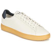 Scarpe Sneakers basse Clae BRADLEY CACTUS