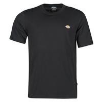 Vêtements Homme T-shirts manches courtes Dickies MAPLETON