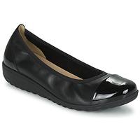Chaussures Femme Ballerines / babies Caprice 22103-026