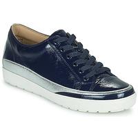 Schuhe Damen Sneaker Low Caprice 23654-889 Blau