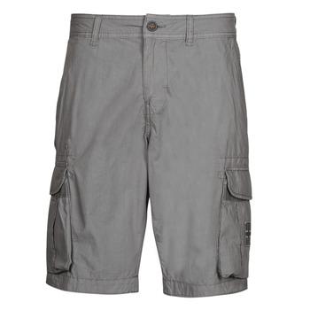Abbigliamento Uomo Shorts / Bermuda Napapijri NORI