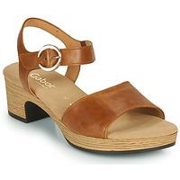Chaussures Femme Sandales et Nu-pieds Gabor 6272153