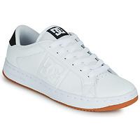 Chaussures Homme Chaussures de Skate DC Shoes STRIKER