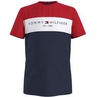 Vêtements Garçon T-shirts manches courtes Tommy Hilfiger KB0KB06534-C87