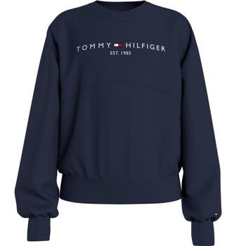 Vêtements Fille Sweats Tommy Hilfiger KG0KG05764-C87