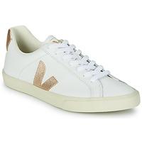 Schuhe Damen Sneaker Low Veja ESPLAR LOGO Weiß / Golden