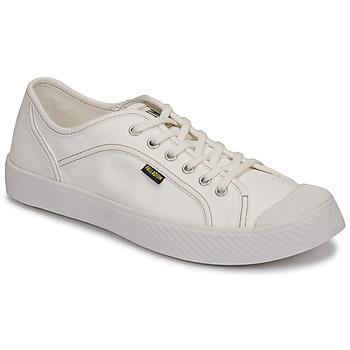Scarpe Sneakers basse Palladium PALLAPHOENIX CVS II