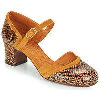 Schuhe Damen Pumps Chie Mihara TROMPETA Braun,