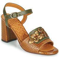 Chaussures Femme Sandales et Nu-pieds Chie Mihara FADIMA