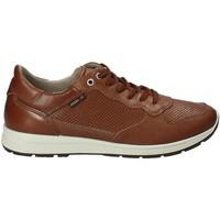 Chaussures Homme Baskets basses Enval 1211422 Marron