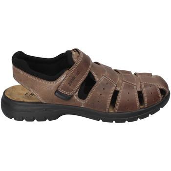 Chaussures Homme Sandales et Nu-pieds Enval 3247522 Marron