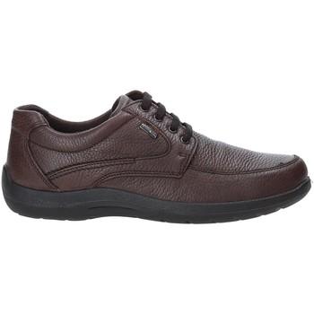 Chaussures Homme Baskets basses Enval 4233511 Marron