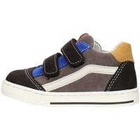 Chaussures Garçon Baskets basses Balocchi 602211 Multicolore