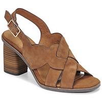 Chaussures Femme Sandales et Nu-pieds Tamaris NOAMY