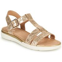 Chaussures Femme Sandales et Nu-pieds Geox D SANDAL HIVER B