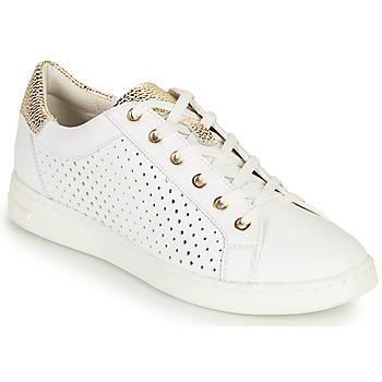 Scarpe Donna Sneakers basse Geox D JAYSEN B