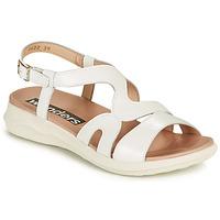 Chaussures Femme Sandales et Nu-pieds Wonders PEWE