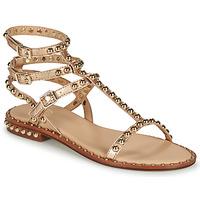 Chaussures Femme Sandales et Nu-pieds Ash PLAY