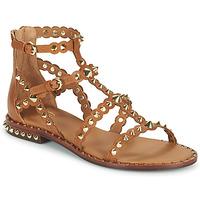 Chaussures Femme Sandales et Nu-pieds Ash PIXEL