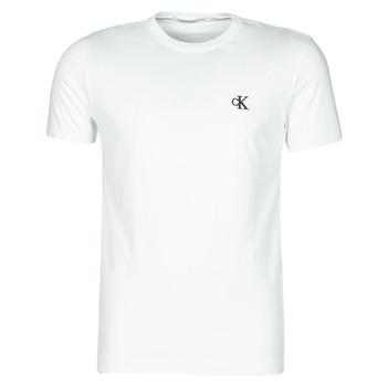 Vêtements Homme T-shirts manches courtes Calvin Klein Jeans YAF