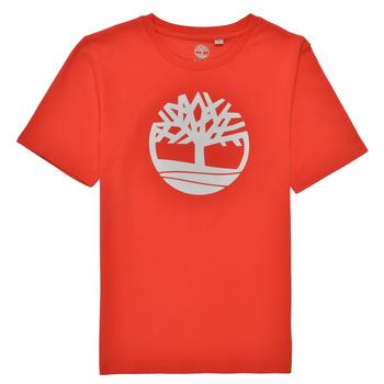 Vêtements Garçon T-shirts manches courtes Timberland LOLLA