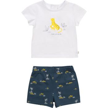 Kleidung Jungen Kleider & Outfits Carrément Beau Y98107-N48 Bunt