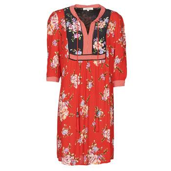 Kleidung Damen Kurze Kleider Derhy SARRIETTE Rot